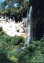 Waterfalls can be seen in the lush montane forests.